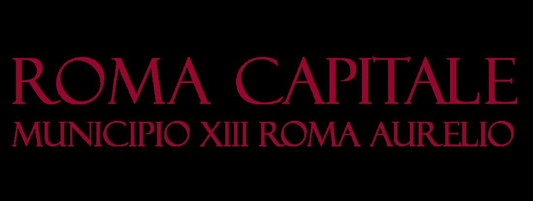 Municipio Roma 13
